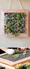 DIY Vertical Succulent Wall Garden
