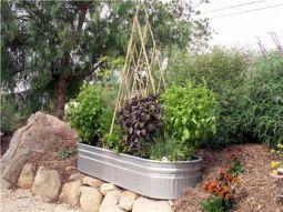 Idea Small Vegetable Container Garden
