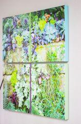 Succulent Wall Art Canvas