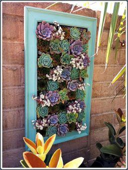 Succulent Wall Frame