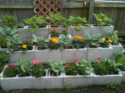 Cinder Block Raised Bed Gardens