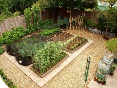 Garden Plot Layout Ideas