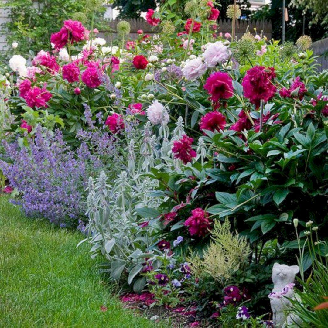 Peonies Flower Garden Design Ideas