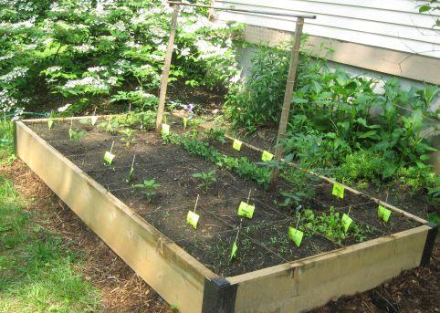 Raised Vegetable Garden Ideas