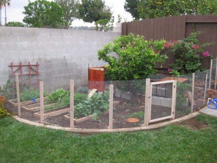 Back Yard Garden Fence Idea