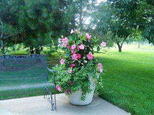 Container Flower Garden Design Ideas