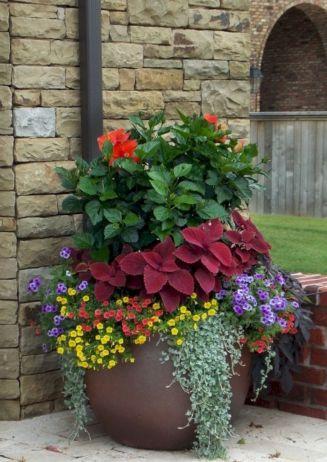 Container Pots Flowers Ideas