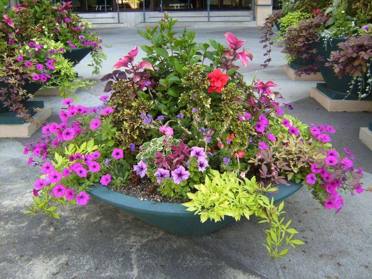 Flower Pot Garden Containers