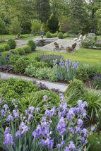 Beautiful Iris Garden Ideas 22