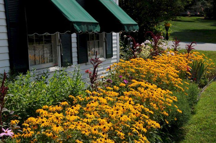 Black Flower Garden Ideas 17