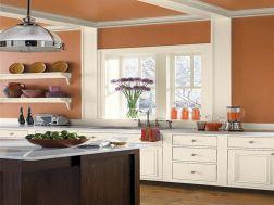 Kitchen Color Schemes Ideas 7
