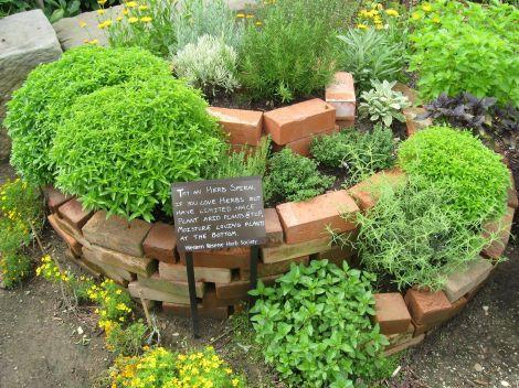Herb Garden Ideas 14