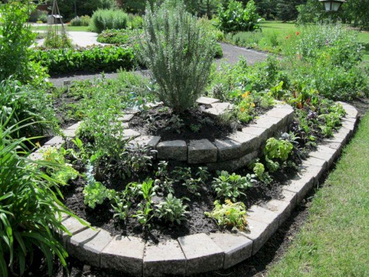 Herb Garden Ideas 6