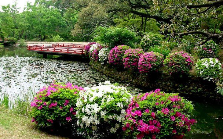Japanese Flower Gardens Ideas 1