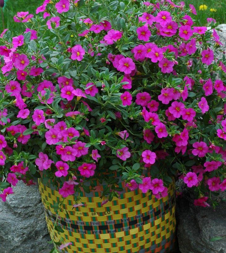 Japanese Flower Gardens Ideas 15