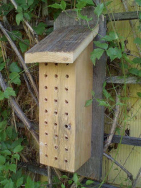 DIY Mason Bee House Design 7