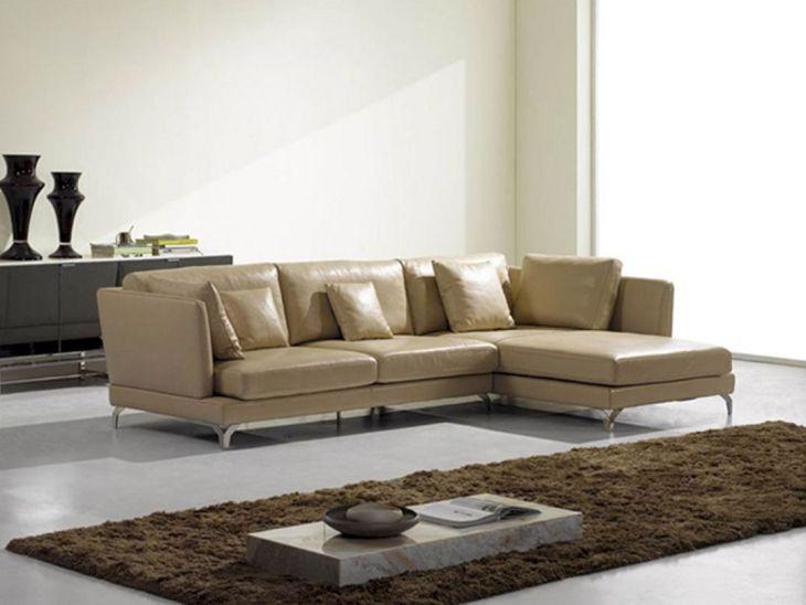 Small Living Room Sofa Ideas 16