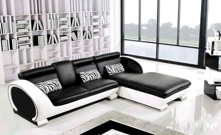 Small Living Room Sofa Ideas 5