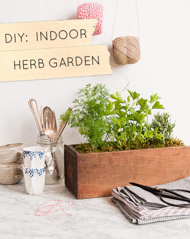 DIY Indoor Herb Garden 9