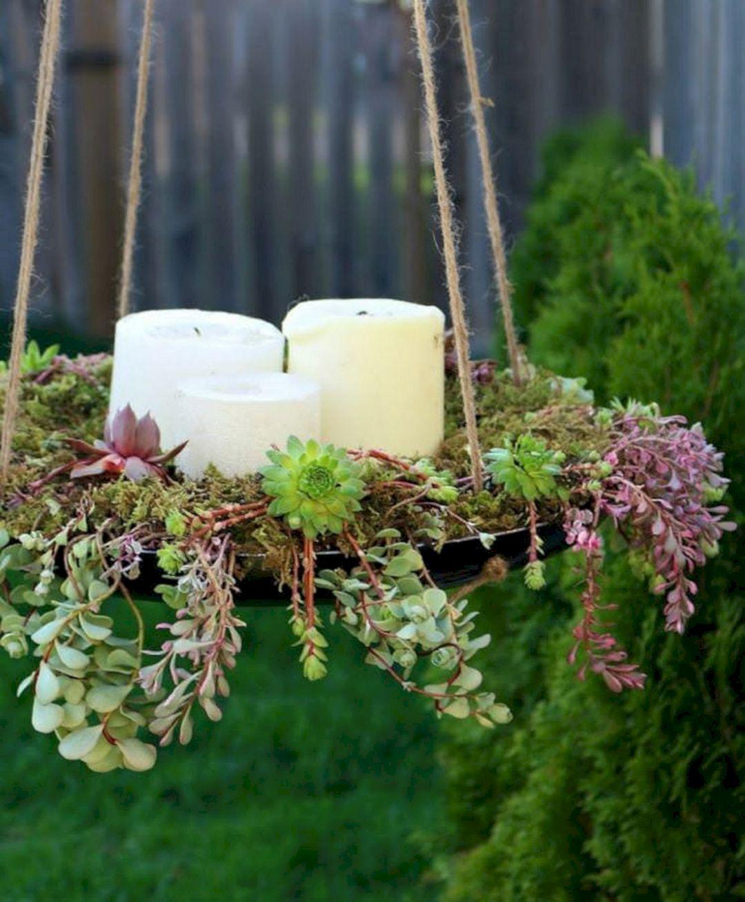 DIY Succulents hanging pot