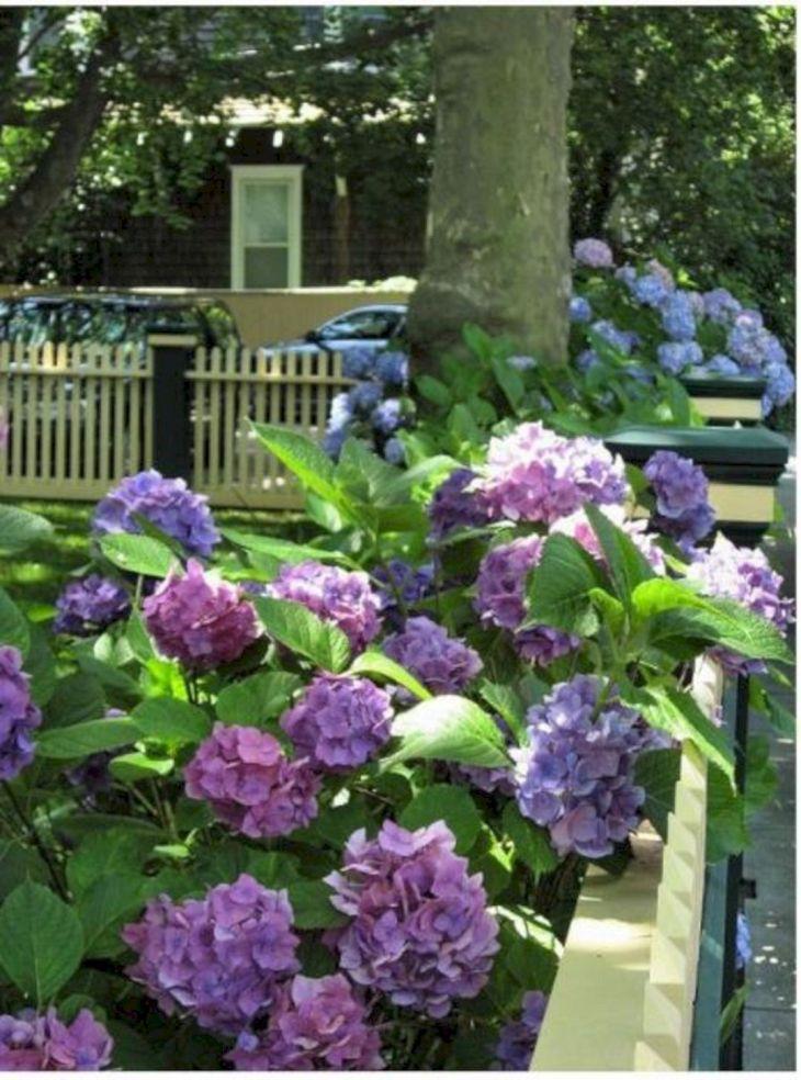 Front Yard Flower Garden Design 5