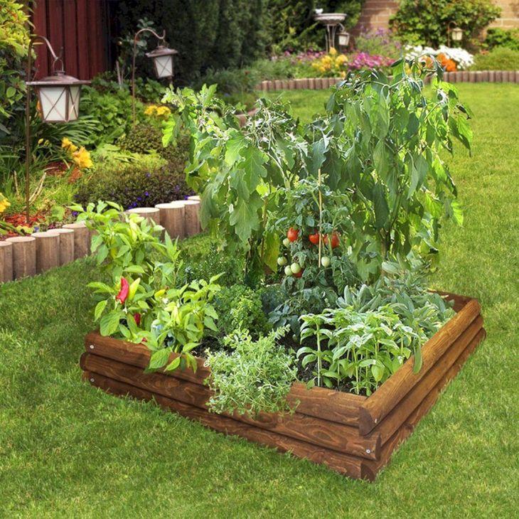 Vegetable Zen Garden Ideas 21