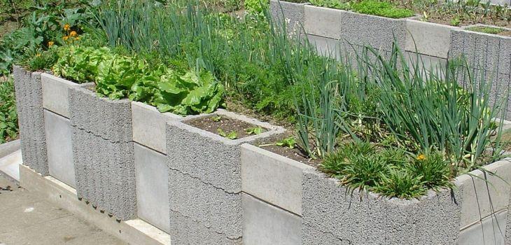 Vegetable Zen Garden Ideas 22