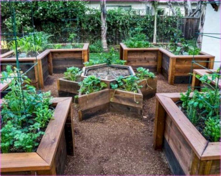 Vegetable Zen Garden Ideas 7