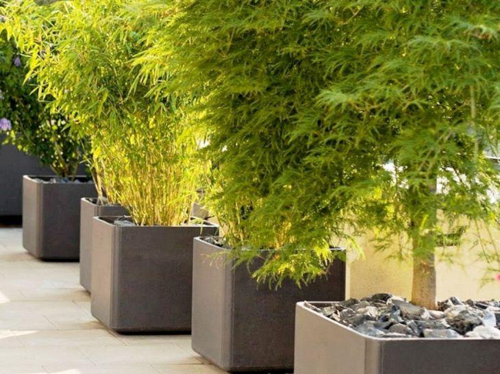 Contemporary Outdoor Planters Ideas 11