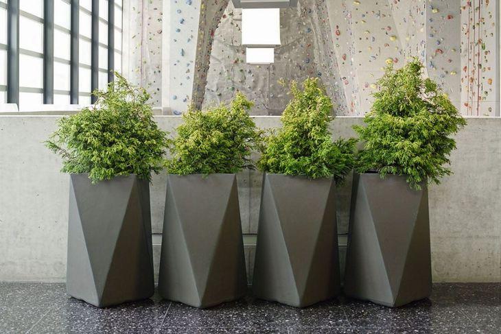 Contemporary Outdoor Planters Ideas 18