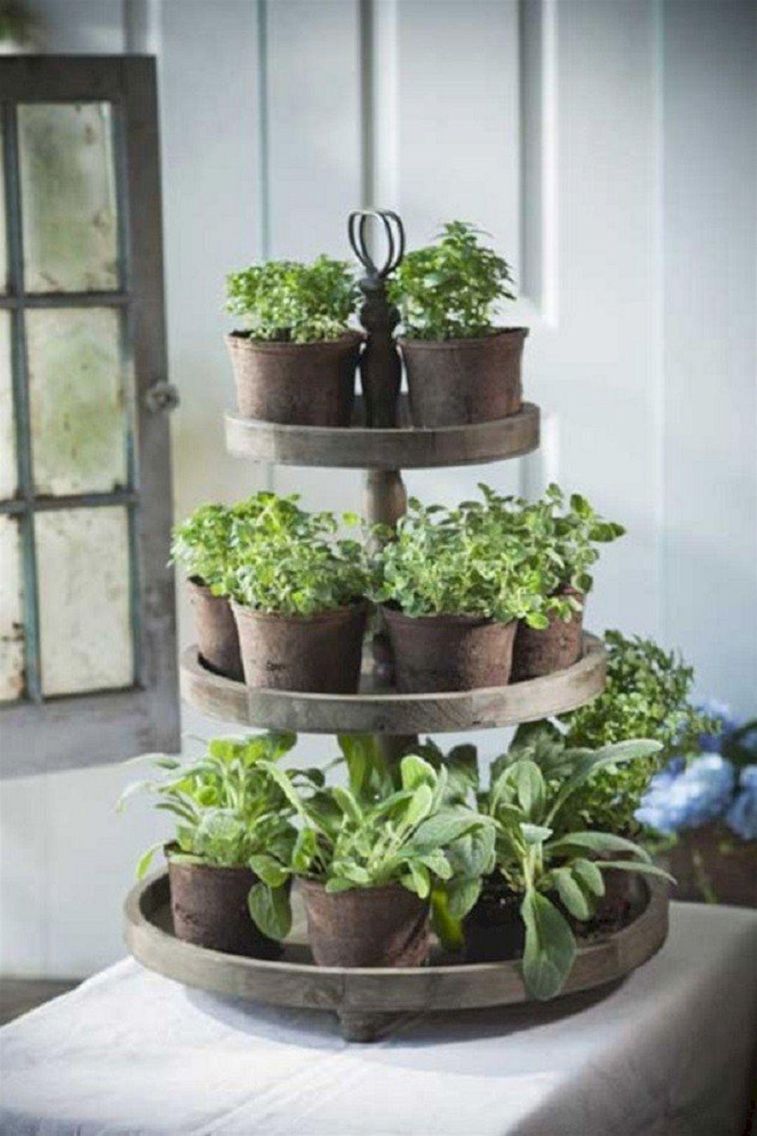 Indoor Herb Garden 290