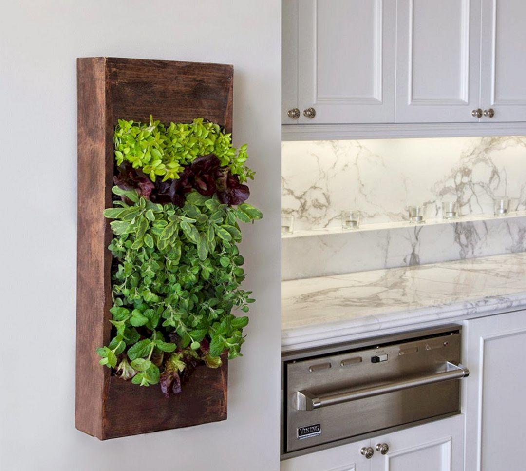 Indoor Herb Garden 70