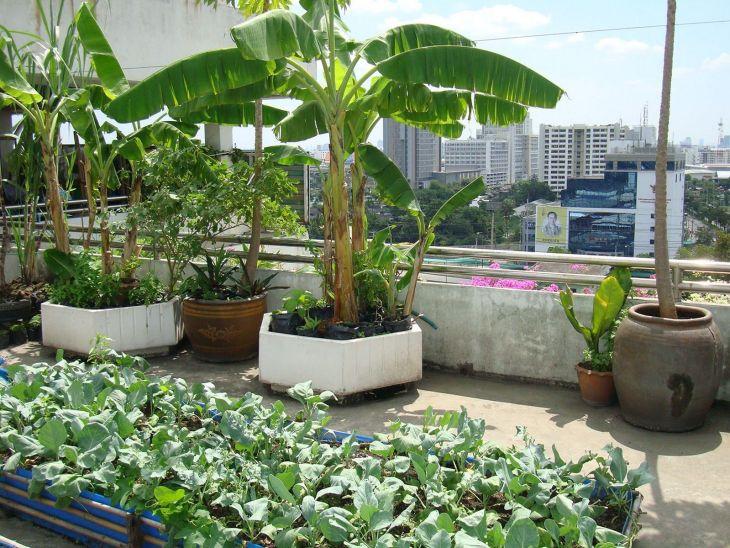 Rooftop Garden Ideas 124
