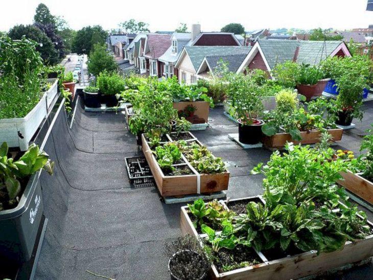 Rooftop Garden Ideas 127