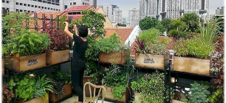 Rooftop Garden Ideas 129