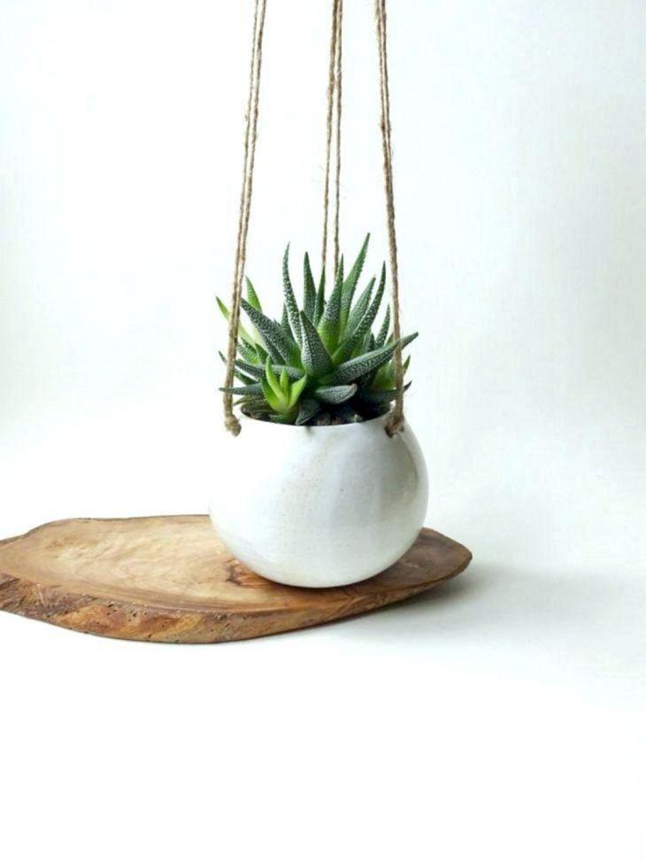 Hanging Pots As Home Garden 3
