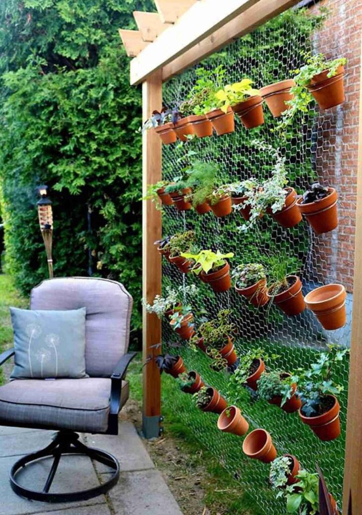 Living Wall Front Home Garden 20
