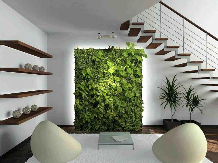 Minimalist Home with Indoor Plants 01