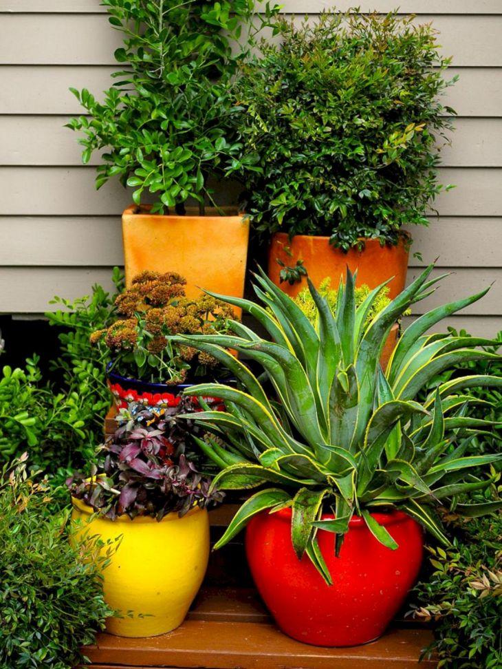 Modern Pot Garden Ideas
