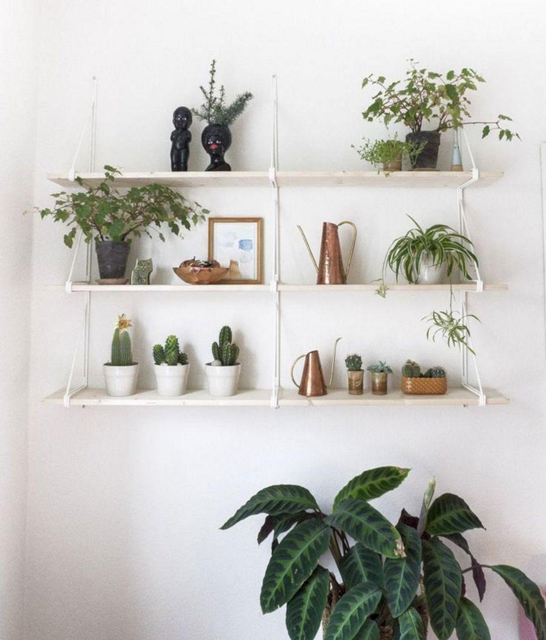 Plans Shelves Decoration