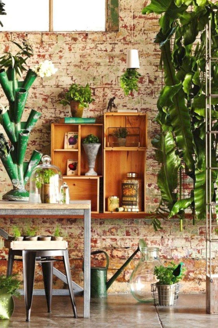 Creative Indoor Garden Plants Ideas