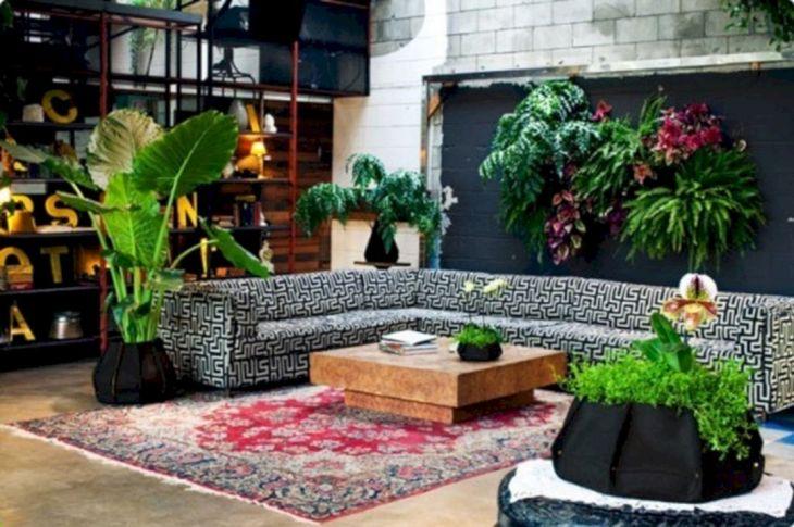 Living Room Indoor Garden