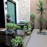SImple Indoor Gardening Ideas