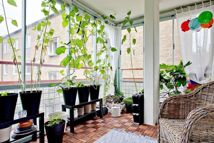 Awesome Indoor Garden Idea