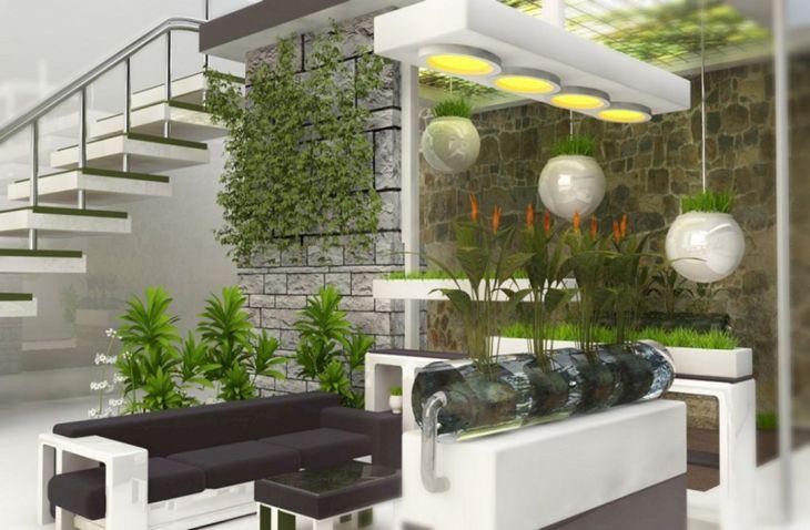 Best Modern Simple Indoor Plants Ideas
