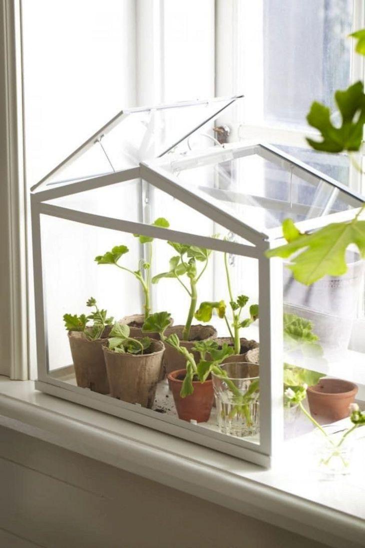 Incredible Simple Indoor Garden