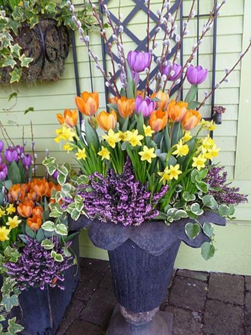 Spring Container Gardening Ideas 10