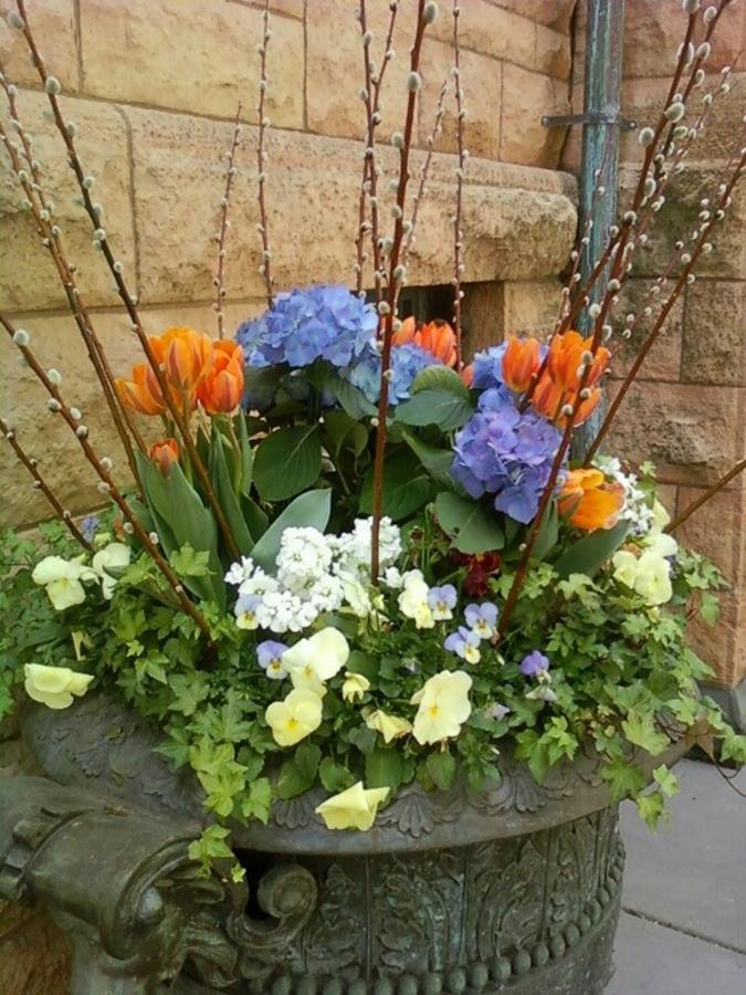 Spring Container Gardening Ideas 15