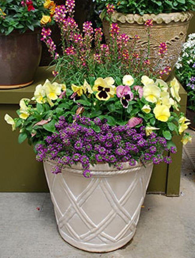 Spring Container Gardening Ideas 20