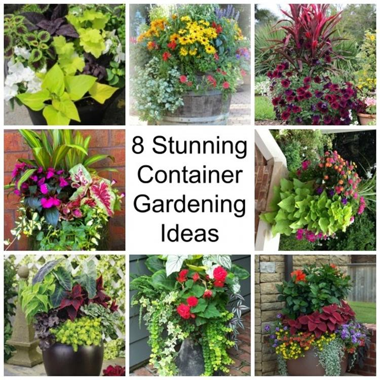 Spring Container Gardening Ideas 30